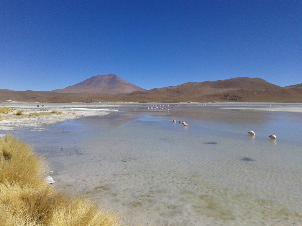 Laguna Hedionda, Uyuni, Bolivia, 2014 | rominitaviajera.com