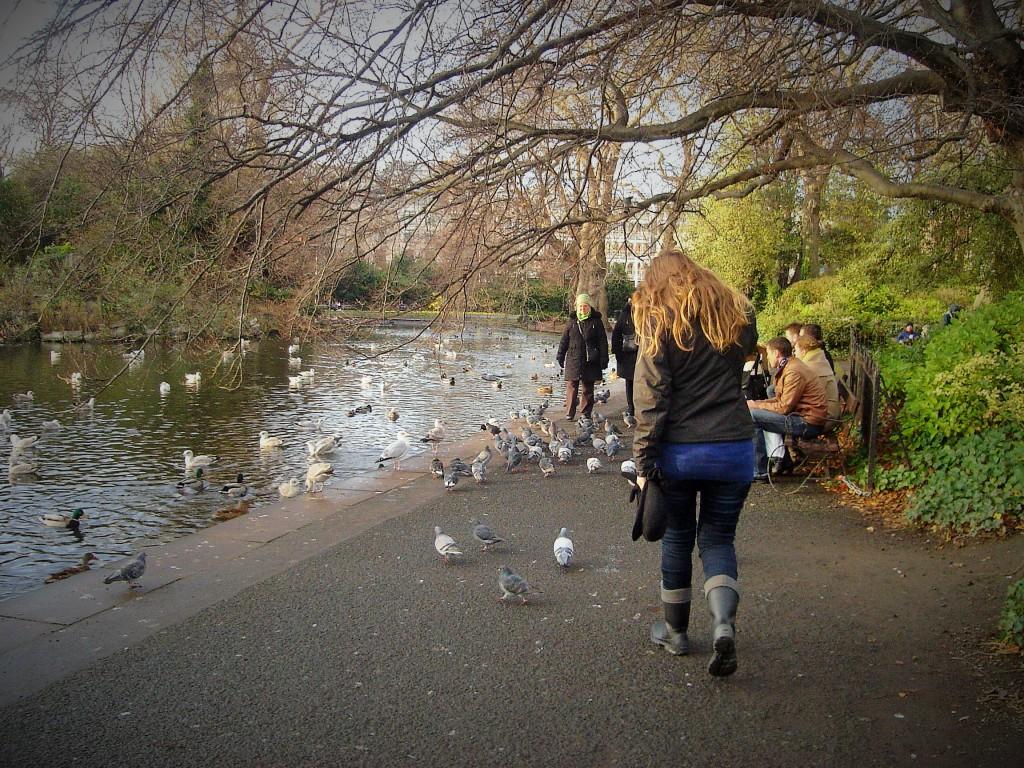 Parques de Dublín, Irlanda, Diciembre 2010
