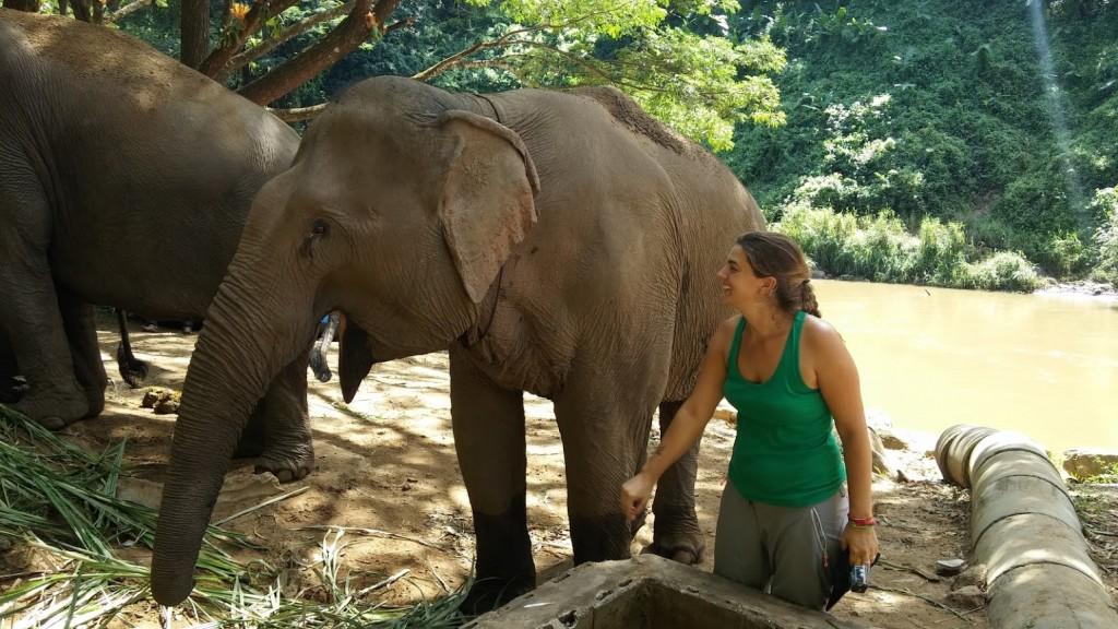 Rominita con los elefantes en el refugio, Chiang Mai, Tailandia, 2015