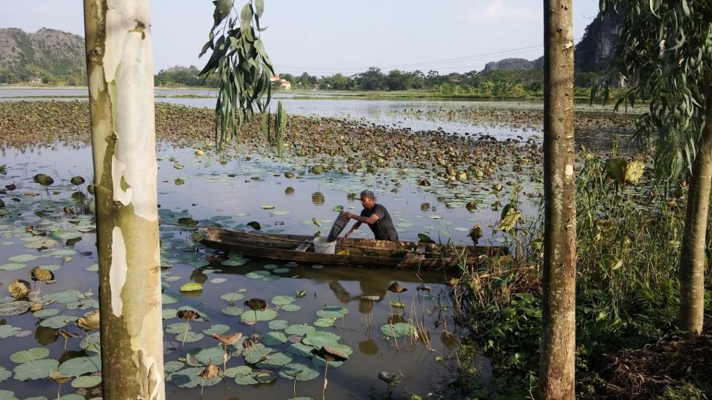 Vietnamita pescando en el río, Tam Coc, Vietnam, 2015